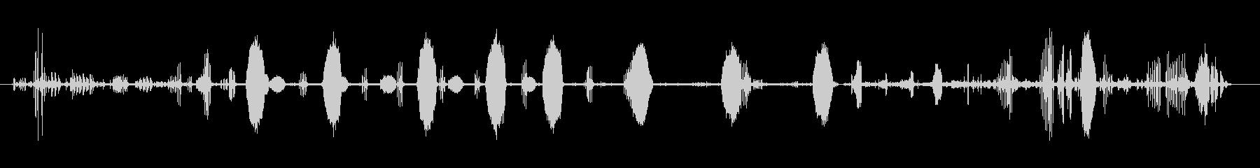ヴェルダムの未再生の波形