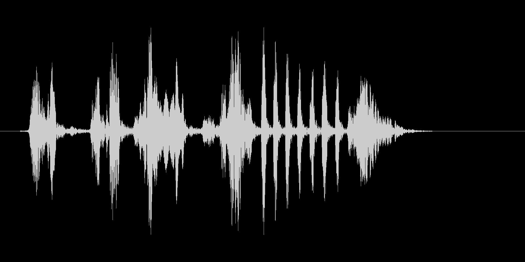 野鳥のさえずり(生録)の未再生の波形