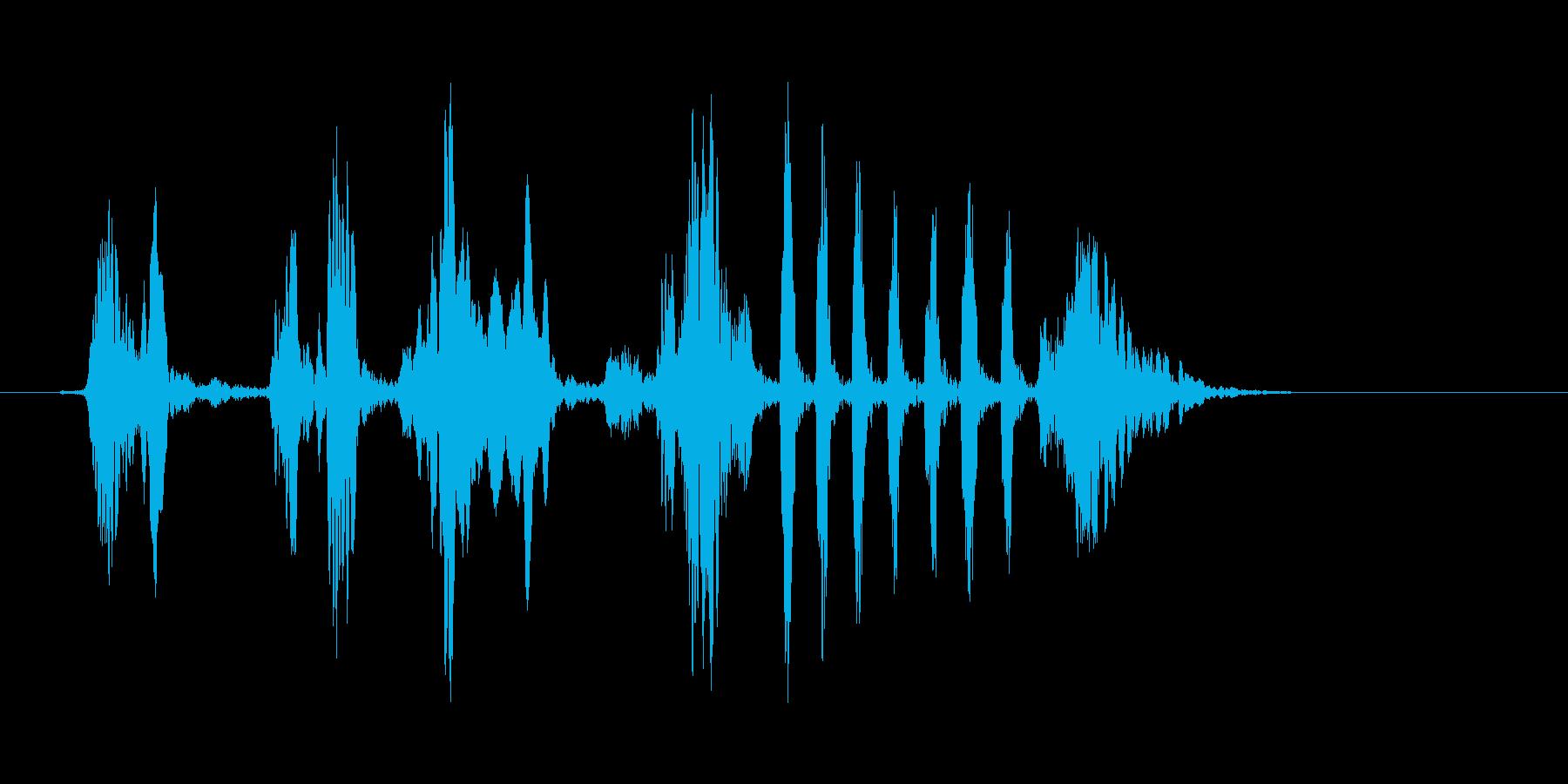 野鳥のさえずり(生録)の再生済みの波形