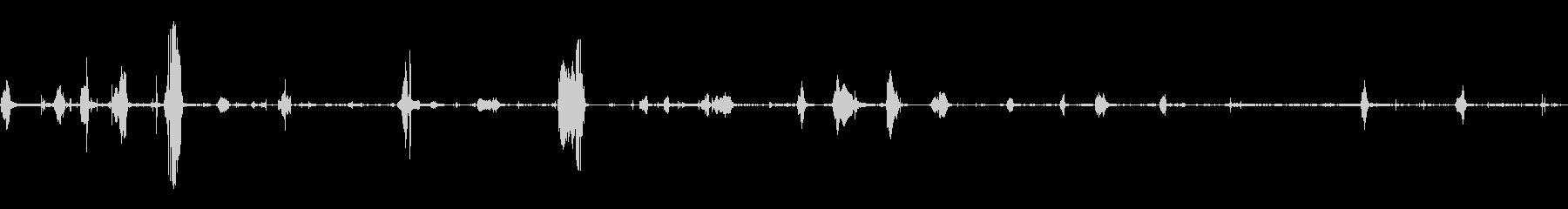 ぬれたうめき声とうなり声の未再生の波形