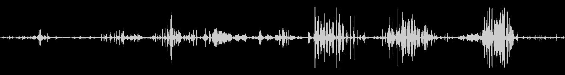 小学生:クスクスと笑いの未再生の波形