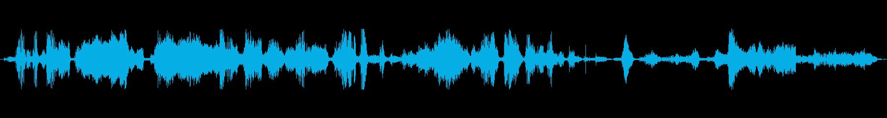 豚 群れメロンメロン01の再生済みの波形