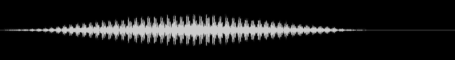 ウシガエル(牛蛙)の鳴き声 生音の未再生の波形