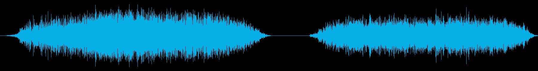 大きな黒いハゲタカ:2つのシューと...の再生済みの波形