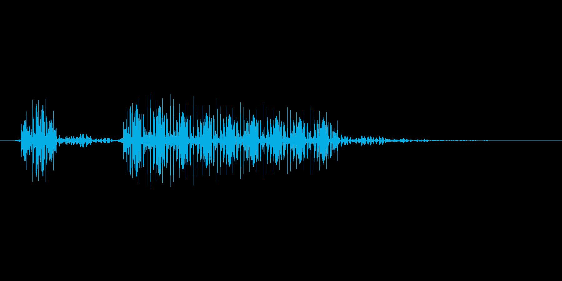 ブブーの再生済みの波形