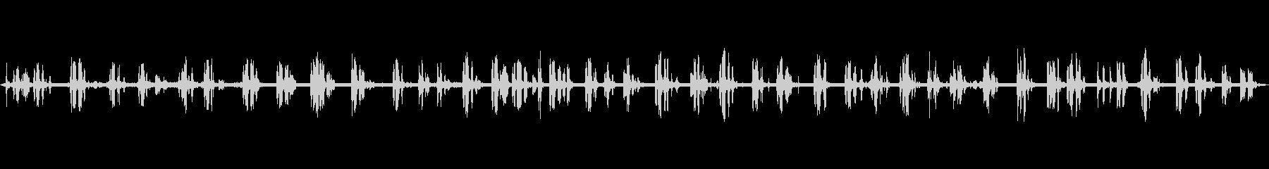 ブラックバード、バード、フォレスト...の未再生の波形