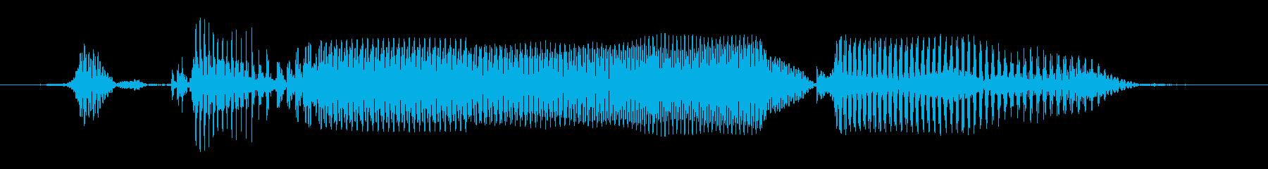 シニア女性B:私は何もわからないの再生済みの波形