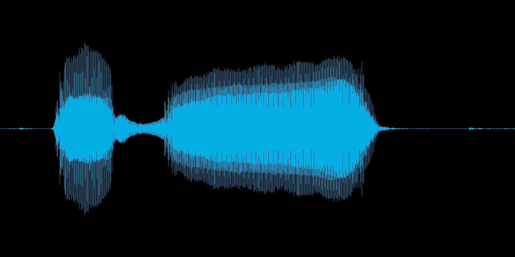 ぶっぶーの再生済みの波形