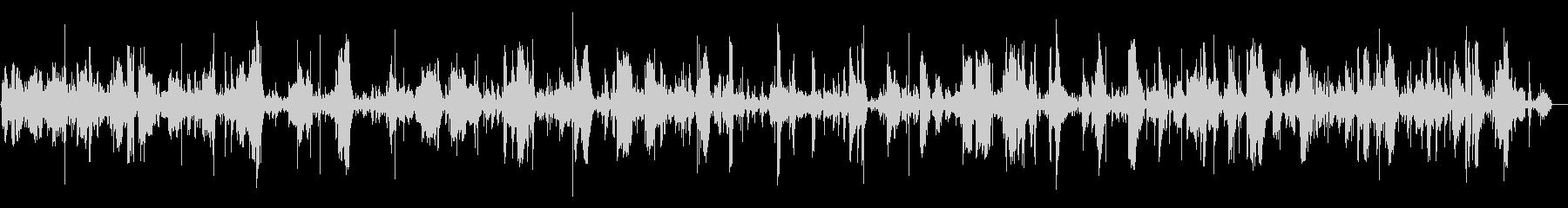 プクプクという激しい泡の音の未再生の波形