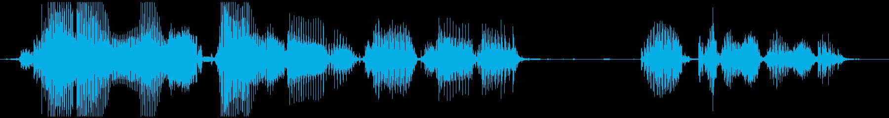 御覧のスポンサーの提供でお送りしましたの再生済みの波形