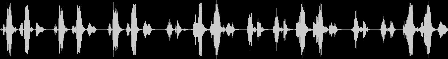 オオヨシキリのさえずり(河原で鳴く鳥)の未再生の波形