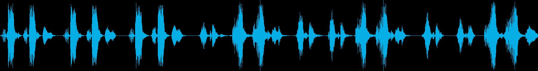 オオヨシキリのさえずり(河原で鳴く鳥)の再生済みの波形