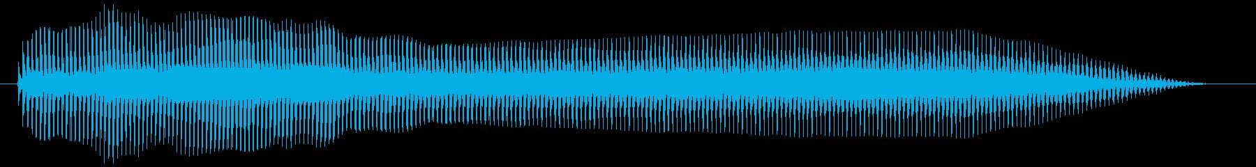 牛の鳴き声 甲高く(チープ) モーゥの再生済みの波形