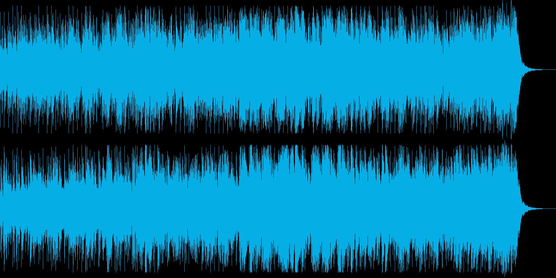 南国エスニックヒーリングの再生済みの波形
