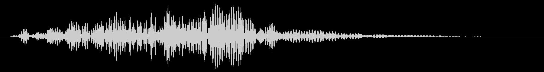 ダルウッドヒューシュラッシュの未再生の波形