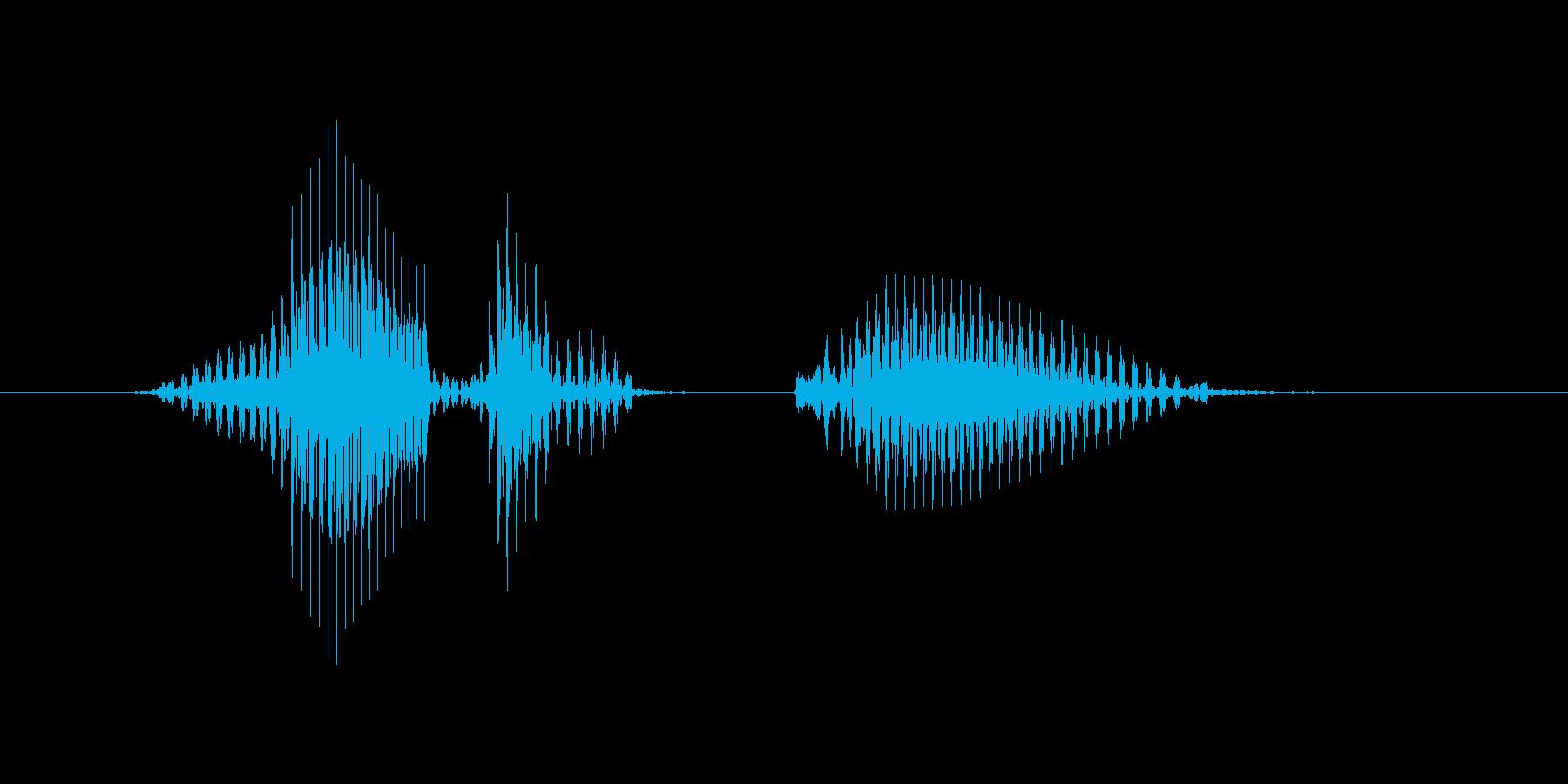 レベル2(つー)の再生済みの波形