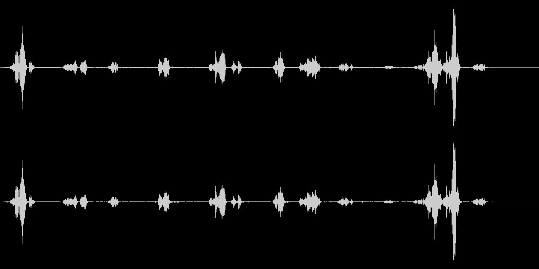 イルカ-屋内プール3の未再生の波形