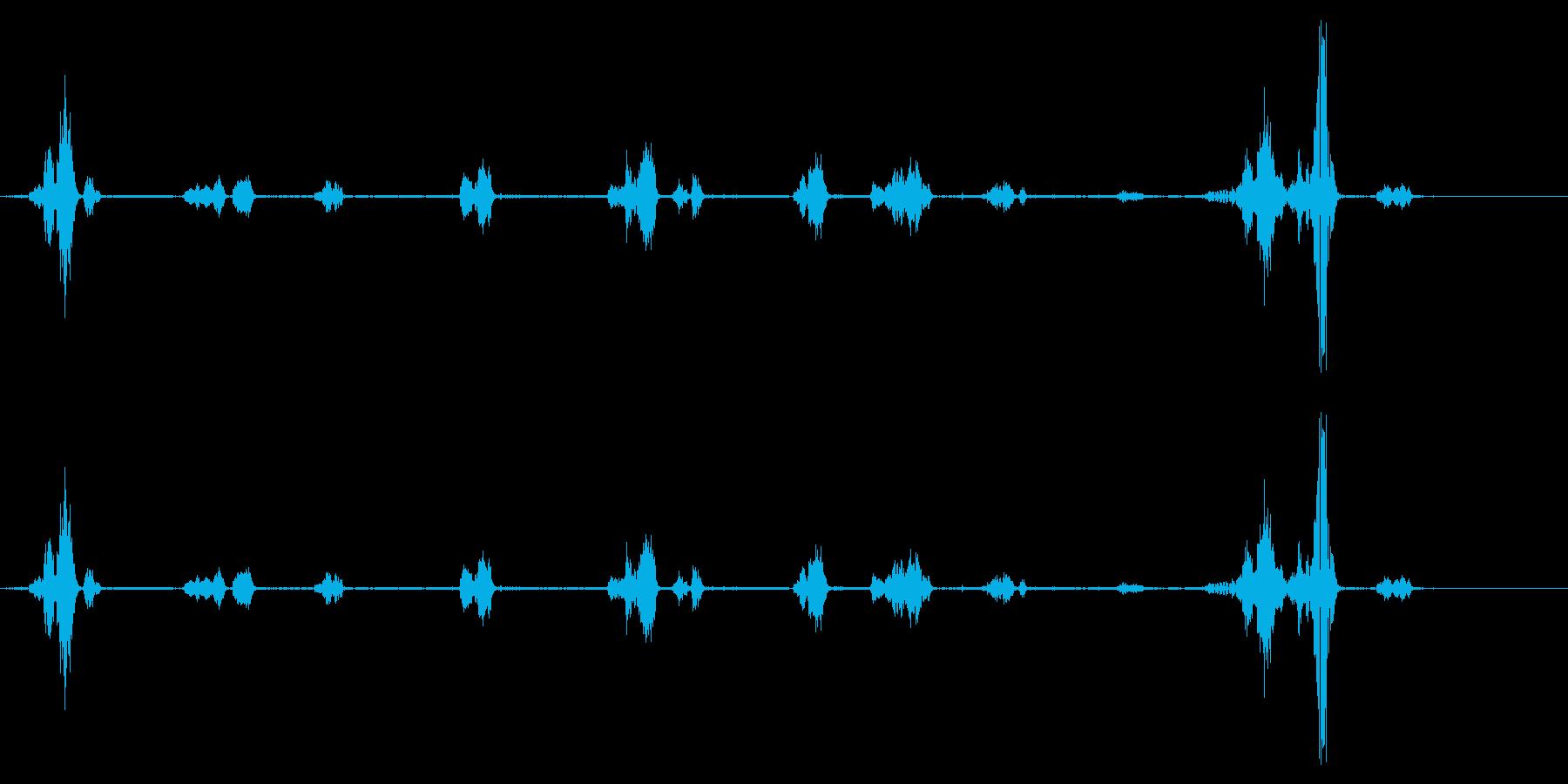 イルカ-屋内プール3の再生済みの波形