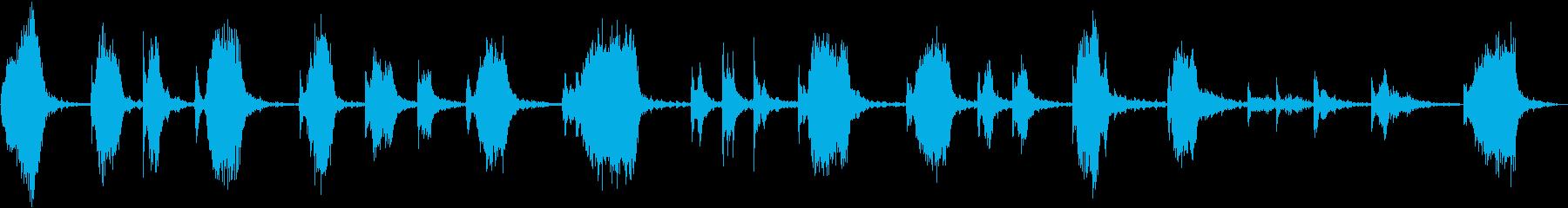 FAN GARDEN RAKE:R...の再生済みの波形