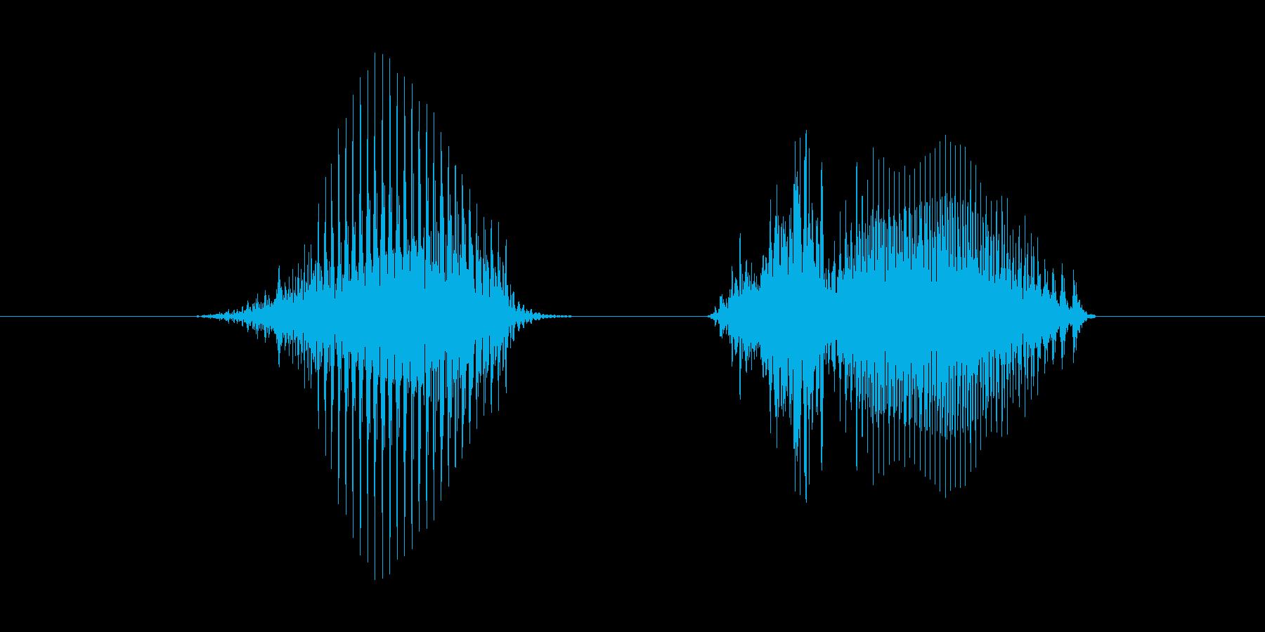8(数字、女の子)の再生済みの波形