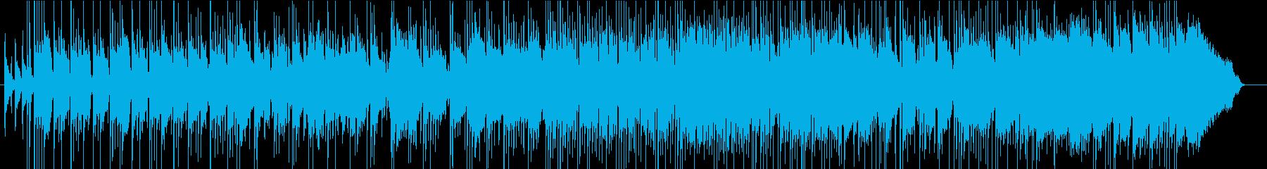 アコギ&ラップスチールUKブルースロックの再生済みの波形