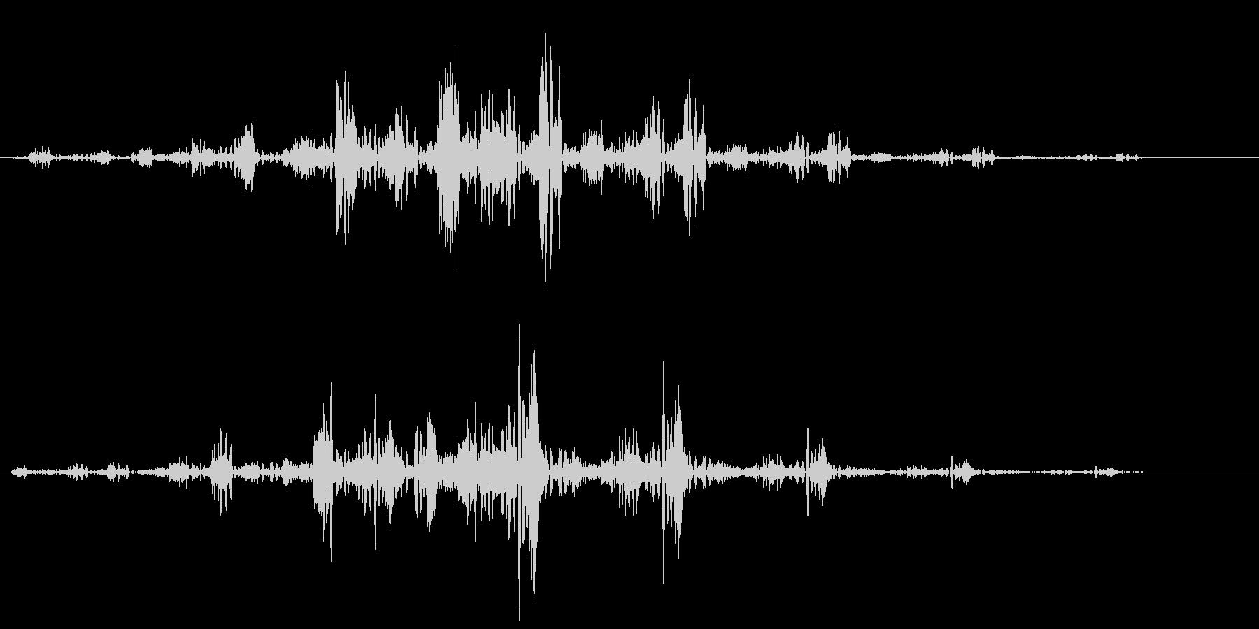 チュンシュワワ(回転系音)の未再生の波形