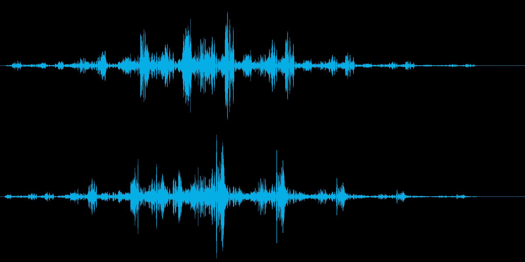 チュンシュワワ(回転系音)の再生済みの波形