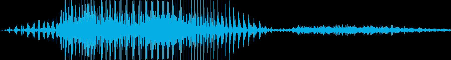 ナイス♪の再生済みの波形