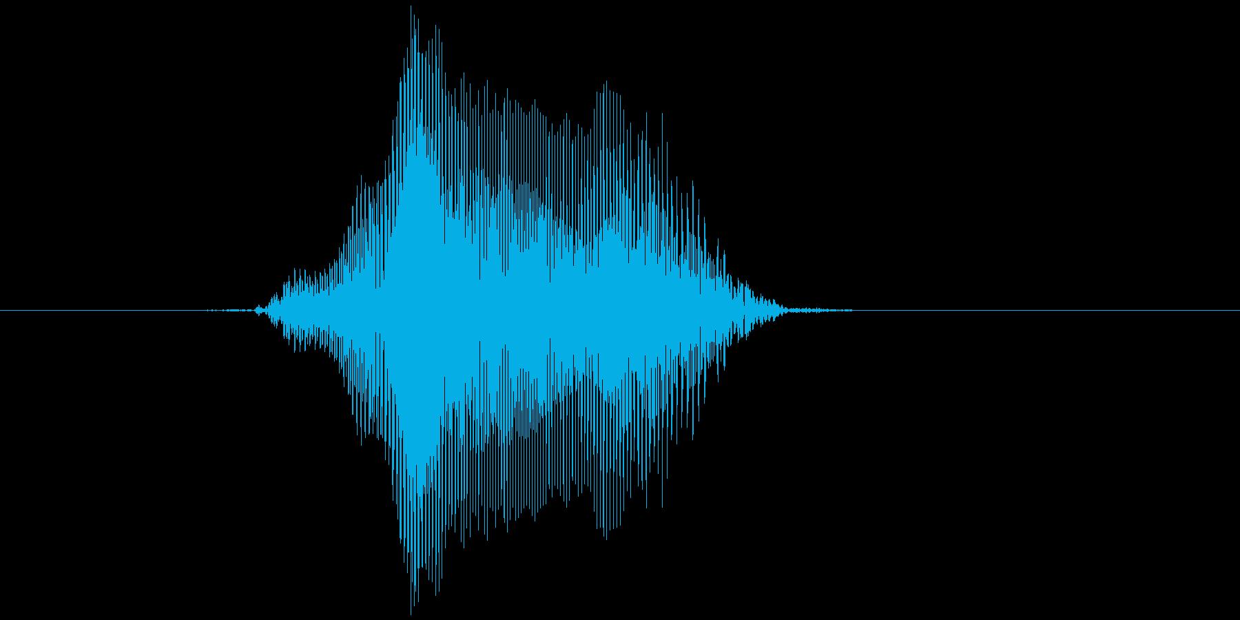 「やー!」の再生済みの波形
