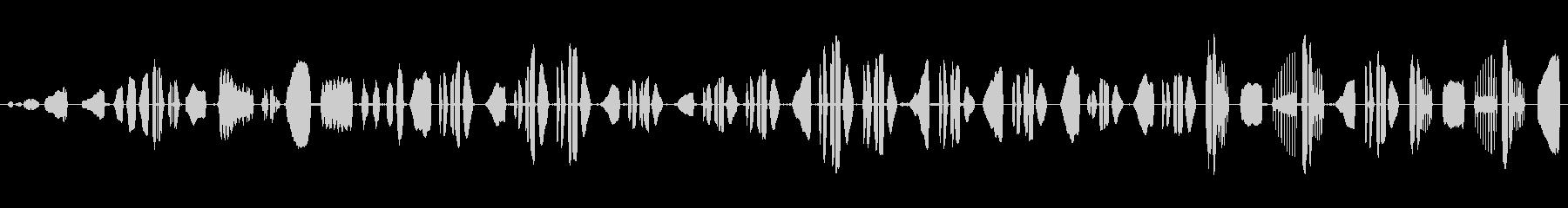 オス・スカイラーク:歌う、動物の鳥の未再生の波形