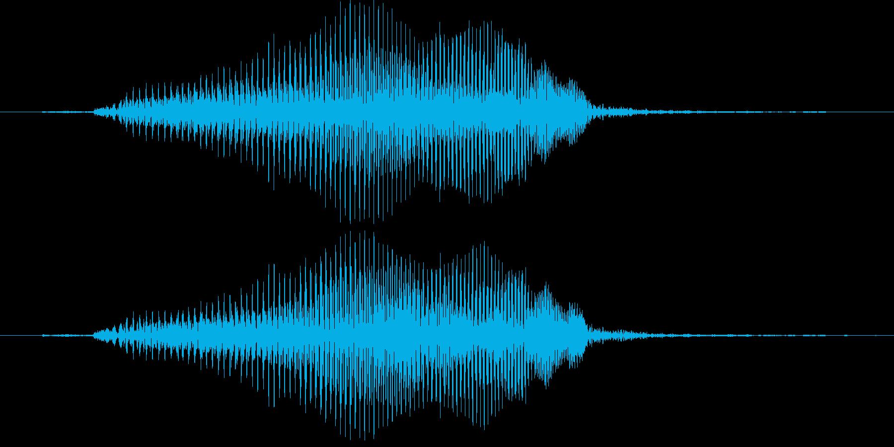 はぁ?(2歳児の生声です)の再生済みの波形