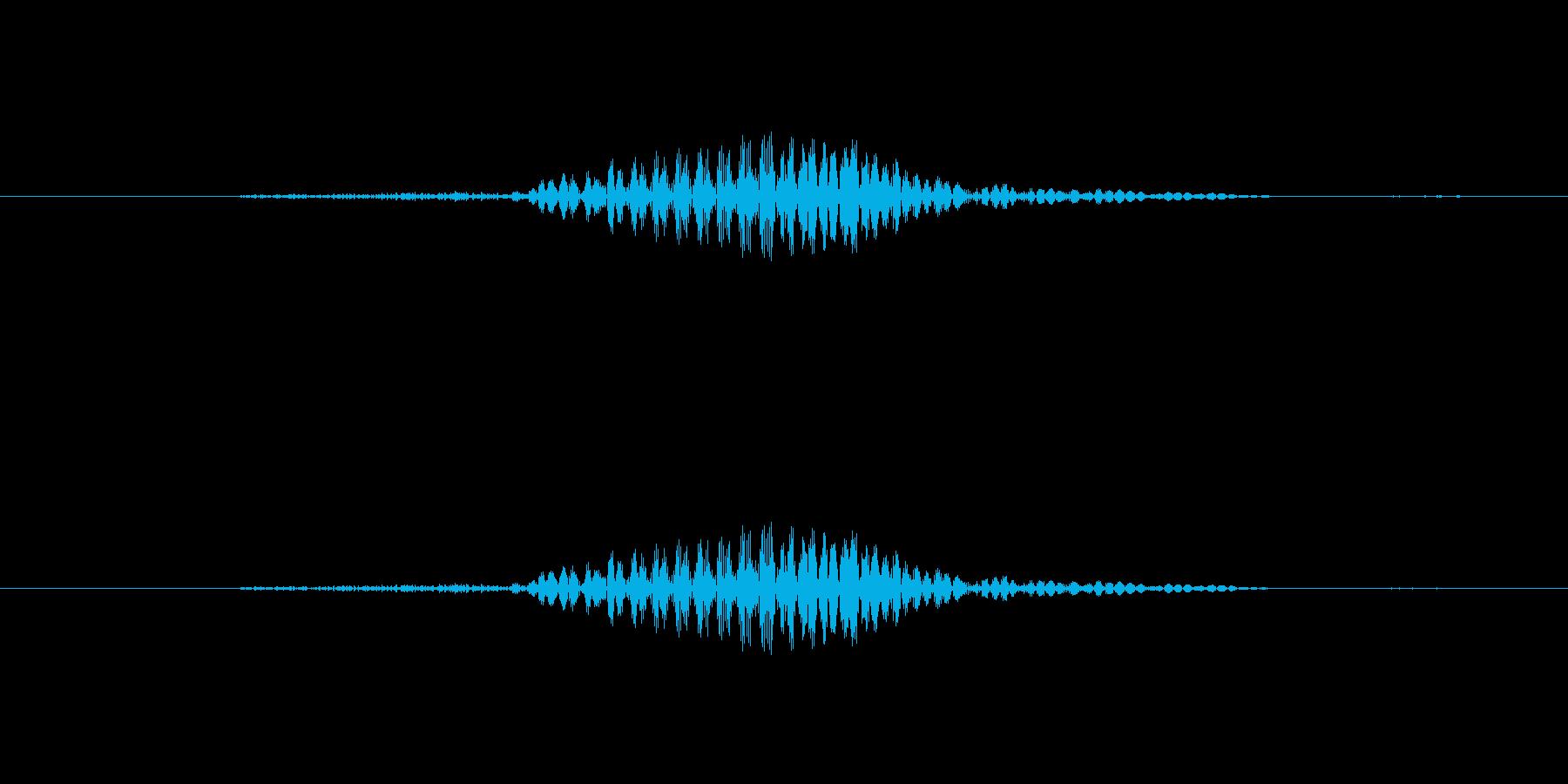 【子供の戦闘ボイス】ふっ(小攻撃・跳ぶ)の再生済みの波形