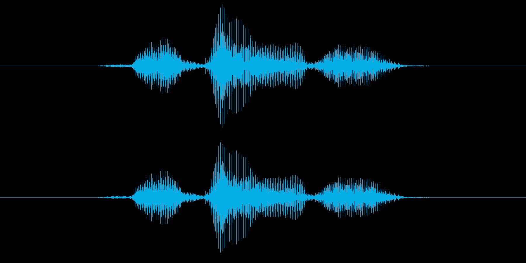 左の再生済みの波形