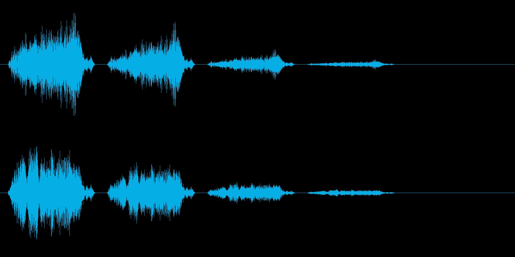 チュチェチェ(鳴き声)の再生済みの波形