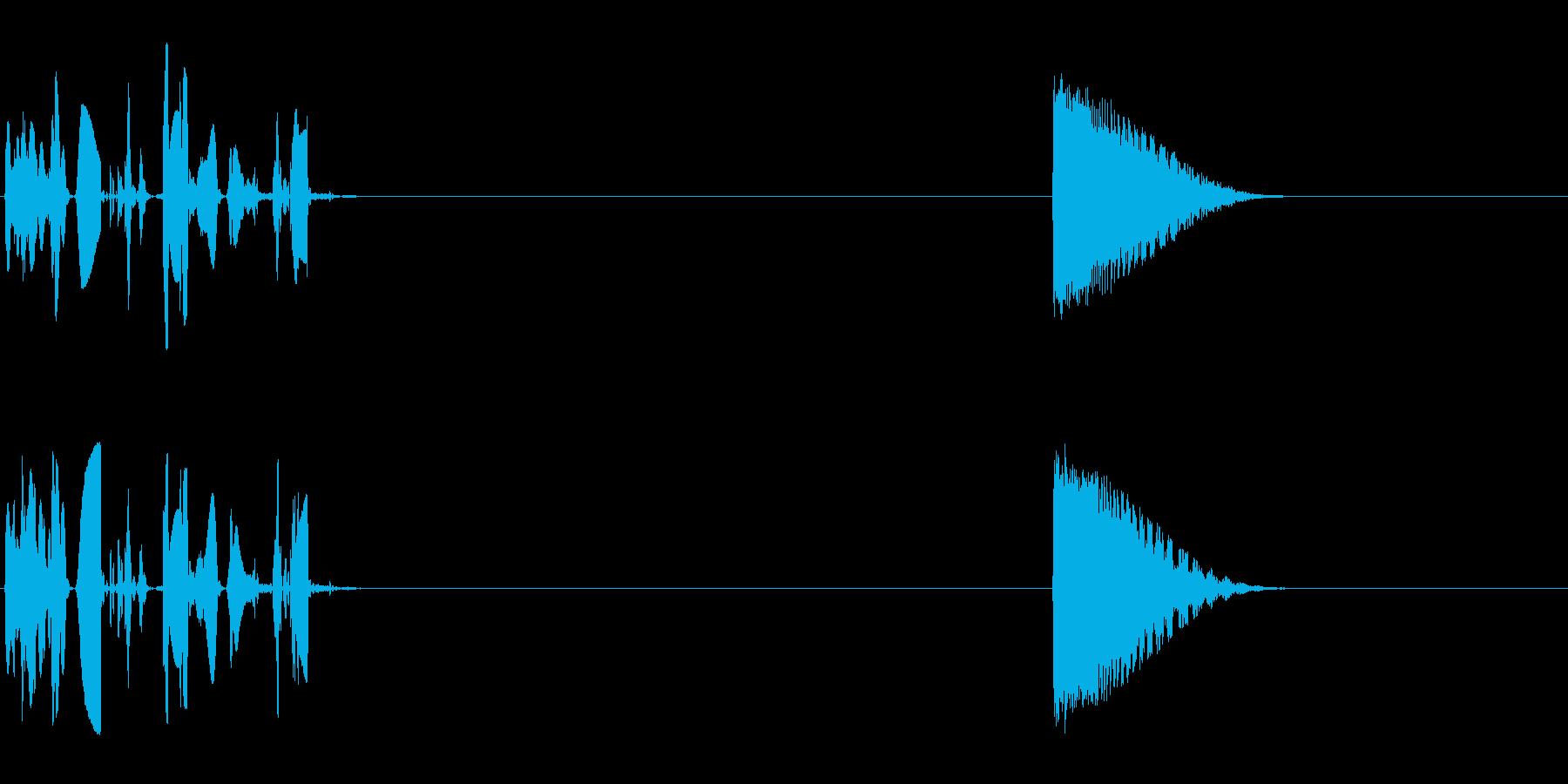 ウォブルトーンシーケンス、コンピュ...の再生済みの波形