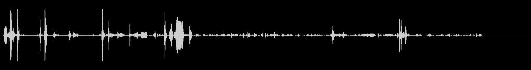 ライオンカブス、2;小さなうなり声...の未再生の波形
