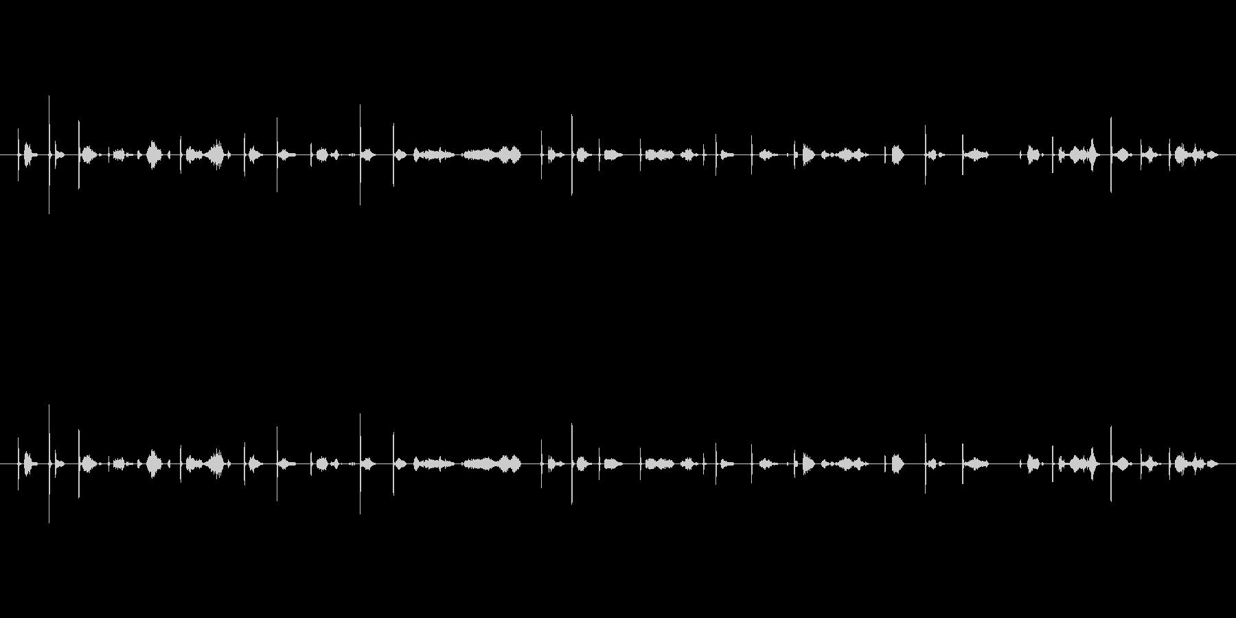 カッカー(鉛筆で文字を書く音)木の板Csの未再生の波形