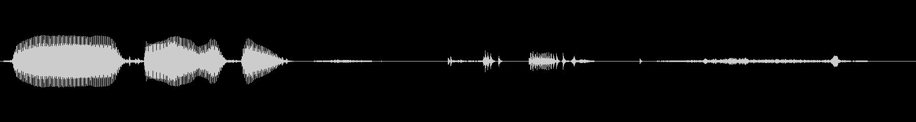 幼児(1~2歳)の笑い声 - 05の未再生の波形