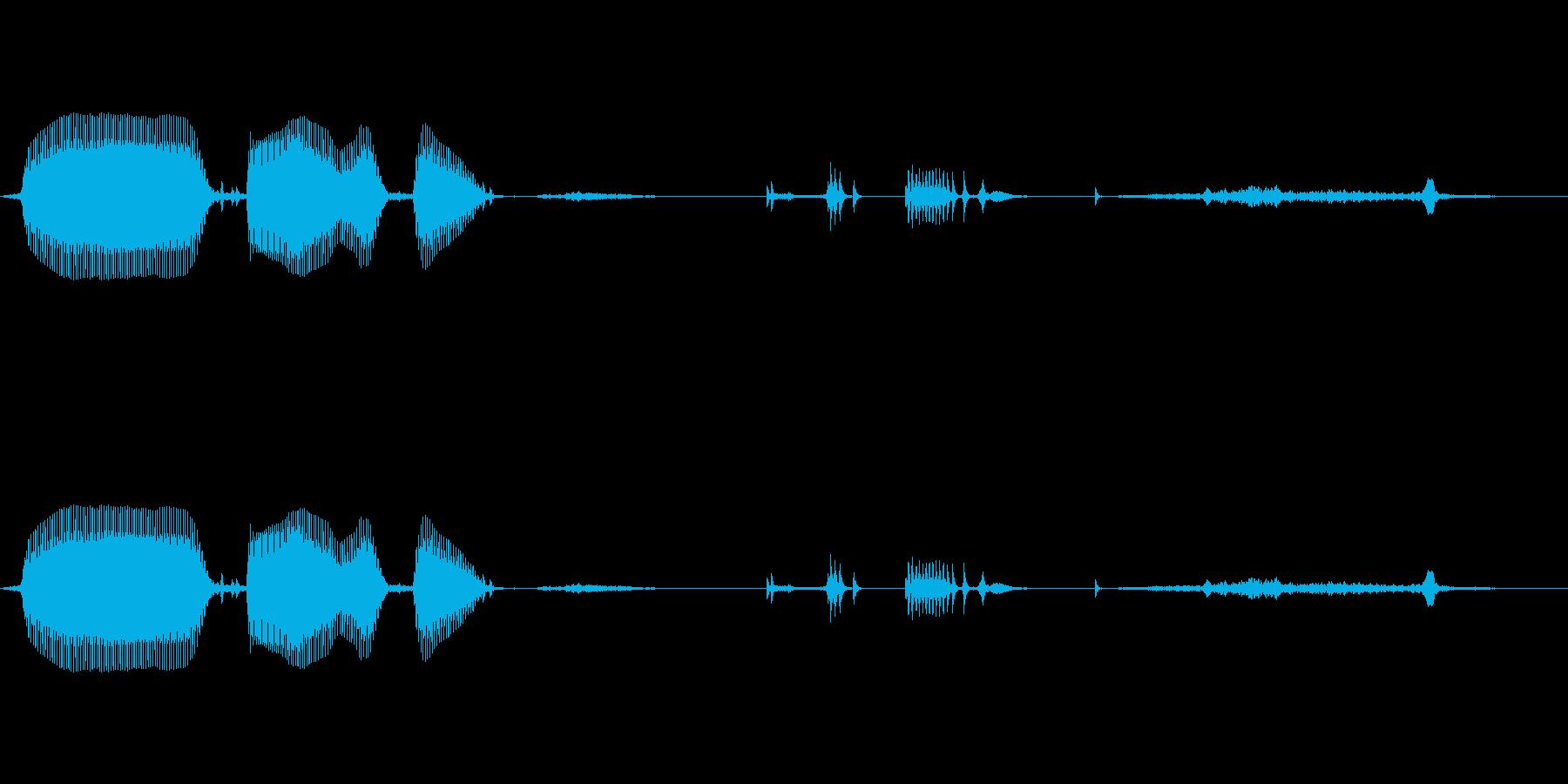 幼児(1~2歳)の笑い声 - 05の再生済みの波形
