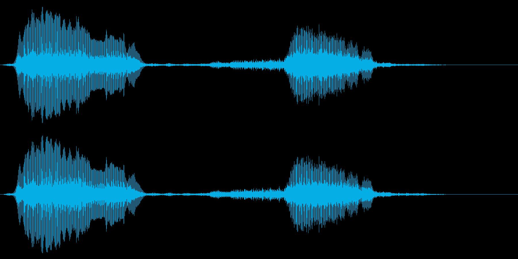 赤ちゃんの鳴き声、動物のヤギと羊の再生済みの波形