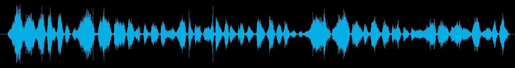 マーカー:ライティング、ロング、ペ...の再生済みの波形