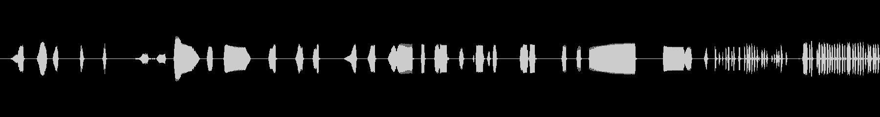 メタルディテクターアラームチャープ...の未再生の波形