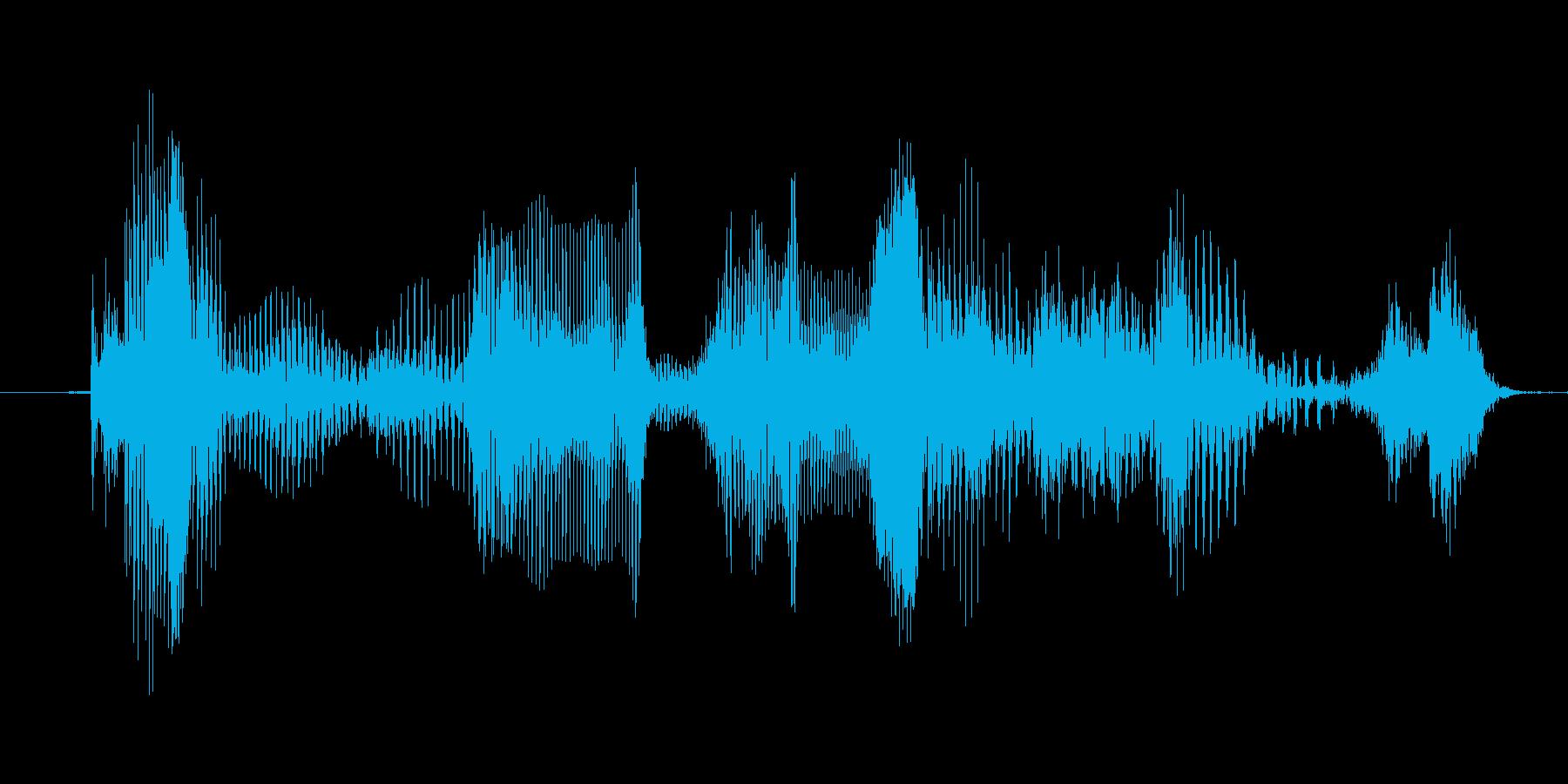 「Congratulation」英語発音の再生済みの波形