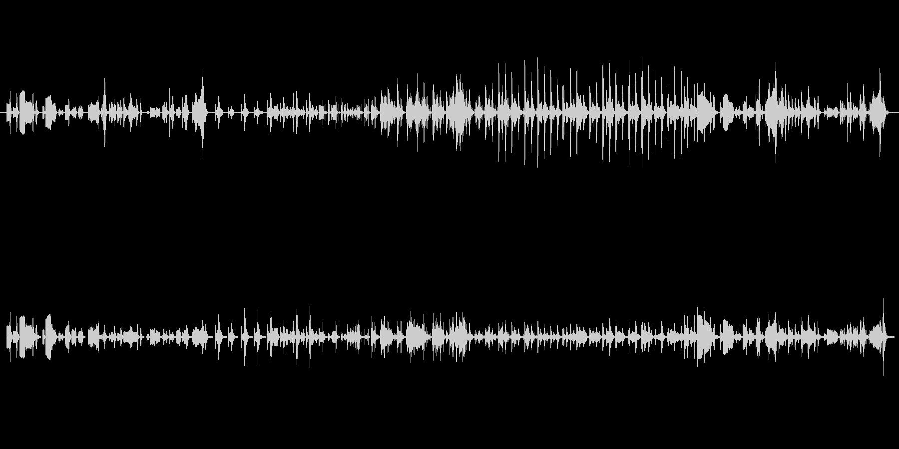 ひっそりしたミステリアスなメロディーの未再生の波形