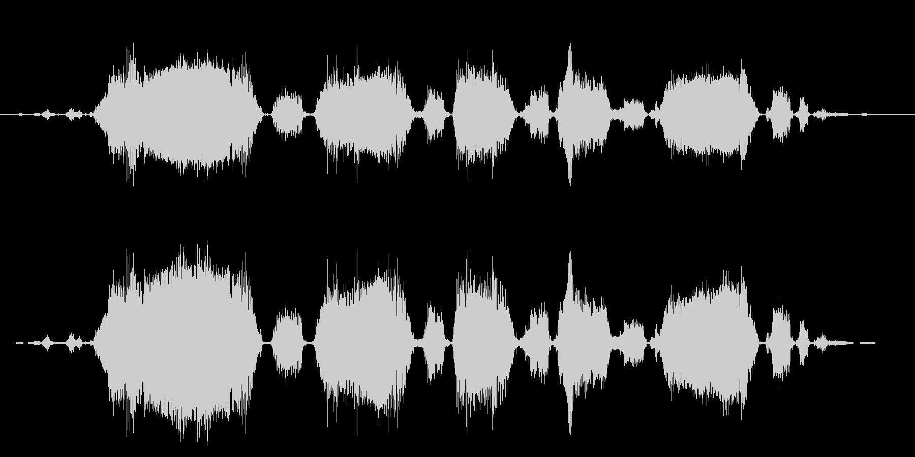 ロバ 泣く02の未再生の波形
