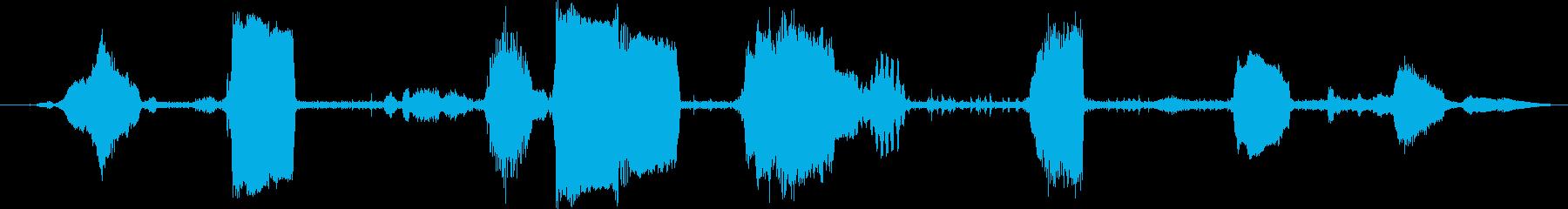 ヒツジのグループ:内線:常時呼び出...の再生済みの波形