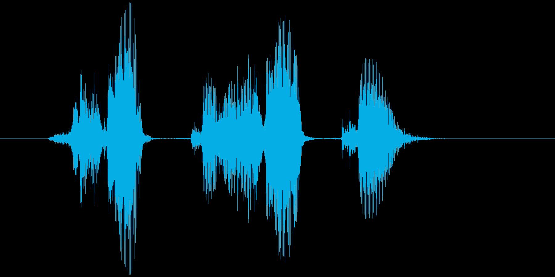 「サクサク」の再生済みの波形