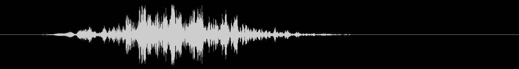 スロースイングのフーシー、フォリーの未再生の波形