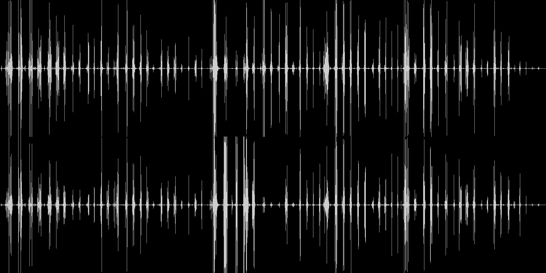 クラゲの刺身を食べるコリコリとした音ですの未再生の波形