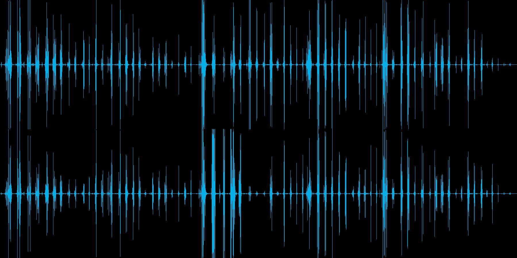 クラゲの刺身を食べるコリコリとした音ですの再生済みの波形